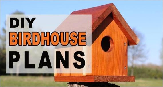 birdhouse plans diy