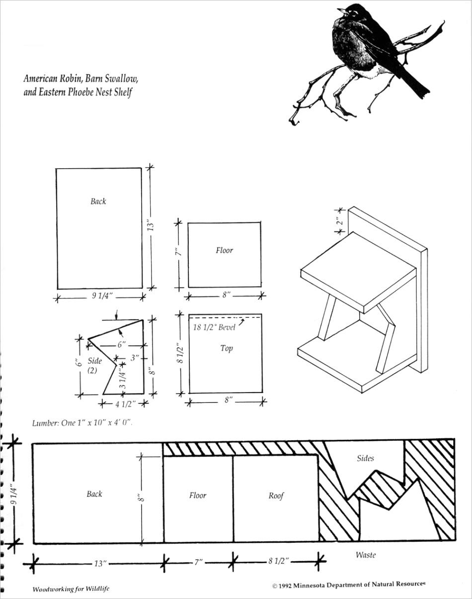 bird house plansml