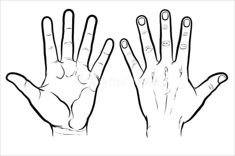 front back hand outline version flat vector drawing isolated white background eps front back hand outline version image
