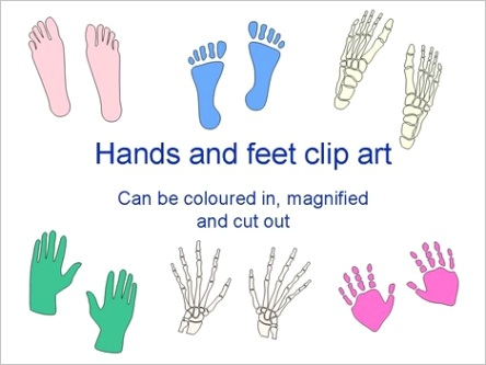 hands and feet template 2723m