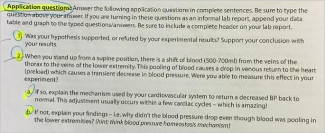 application que answer following application questions plete sentences sure type questi q