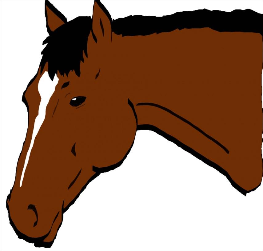 horse head cartoonml