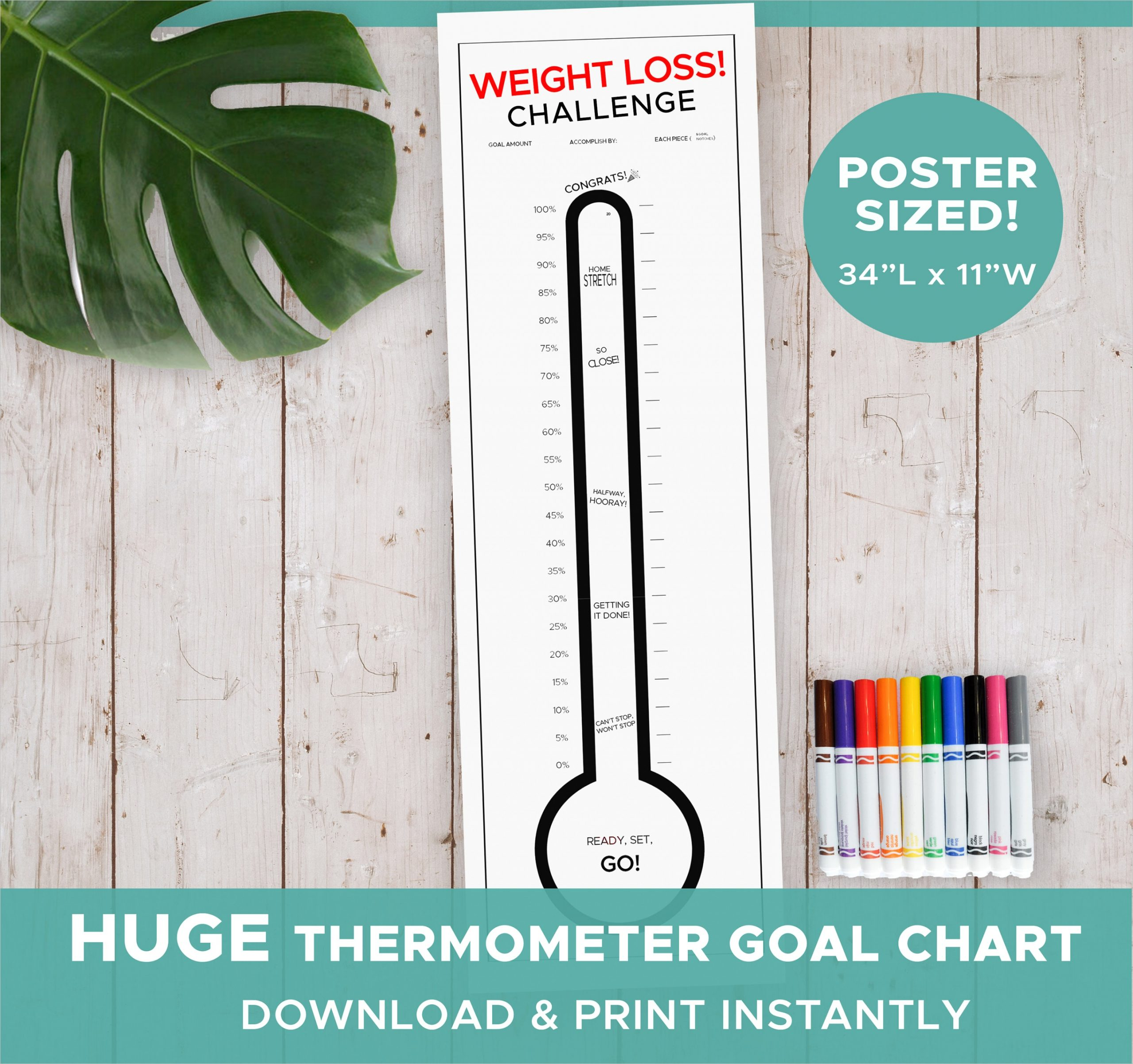 giant weight loss goal thermometer