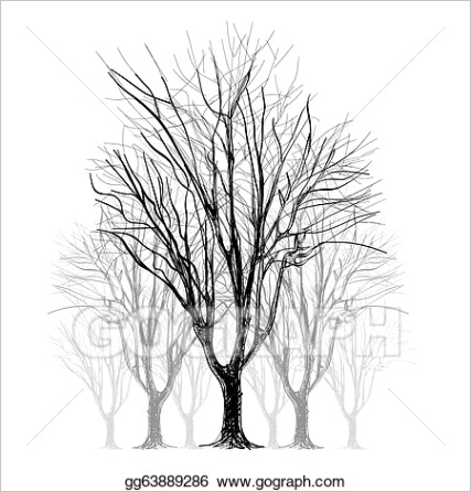 large bare tree without leaves hand drawn gg ml