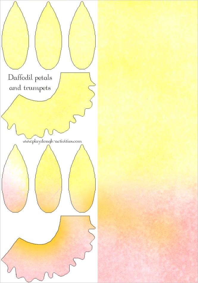 daffodil petal trumpet template playdough flower printable for springml