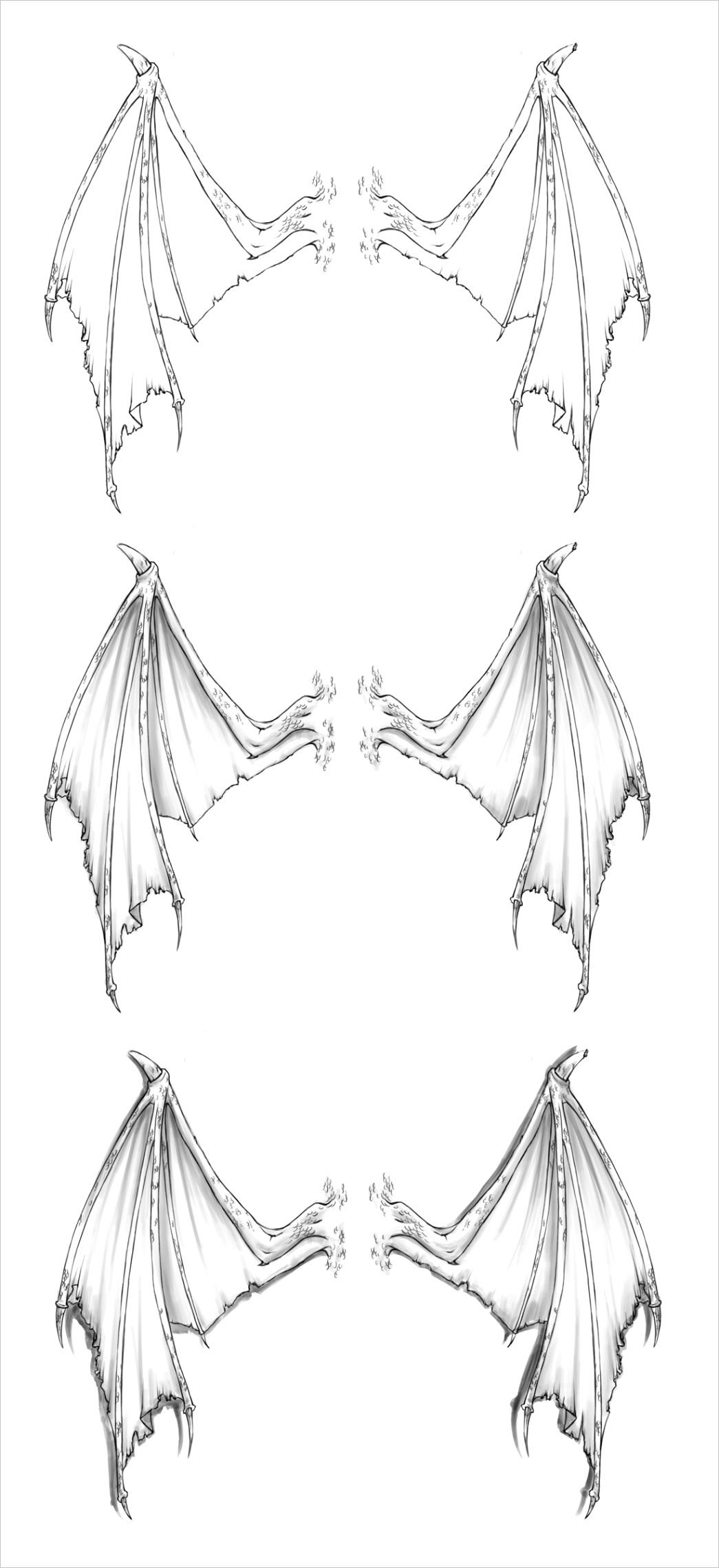 Dragon Wing Tattoo