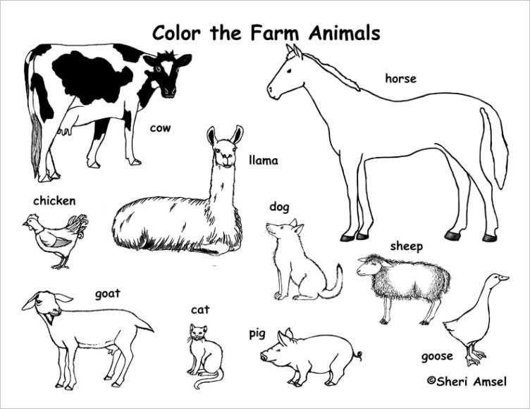 Farm Animals Coloring Page