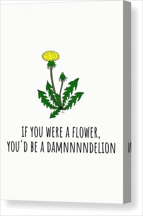 funny valentine card boyfriend card girlfriend card anniversary card damndelion joey lott product=canvas print