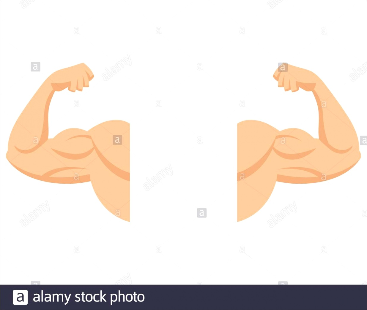 strong arms with contracted biceps muscle in cartoon style image ml