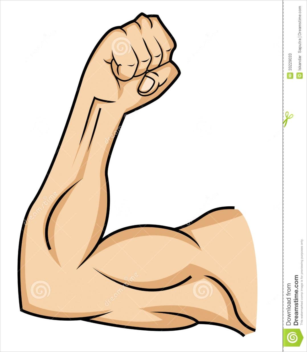 stock photos muscle hand vector cartoon illustration image