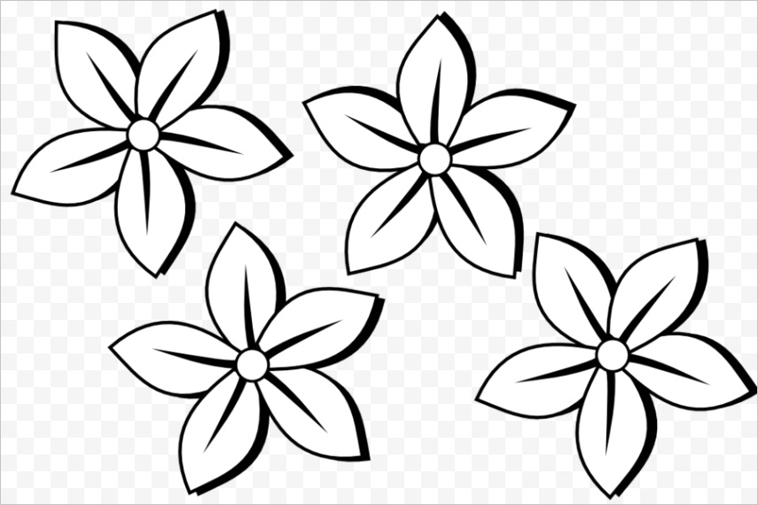 black and white flowers transparentml