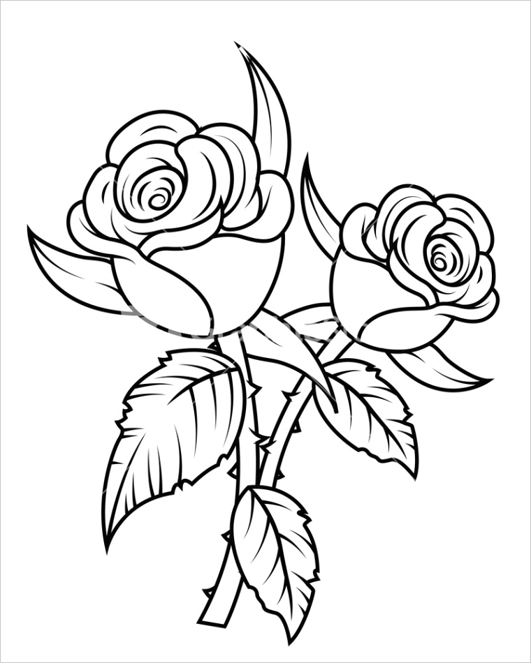 rose clipart black and white 8980