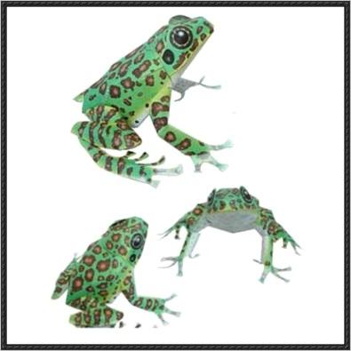 animal paper model ishikawas frog free template ml