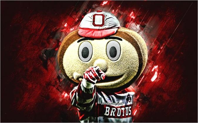 brutus buckeye ohio state university mascot ncaa red stone background creative art