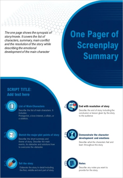 one pager of screenplay summary presentation report infographic ppt pdf documentml