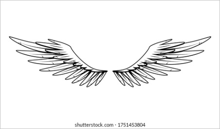 eagle wings cartoon