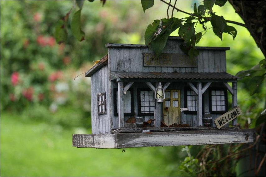 cool bird house donna walshml