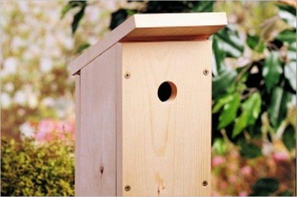 build one board diy birdhouse