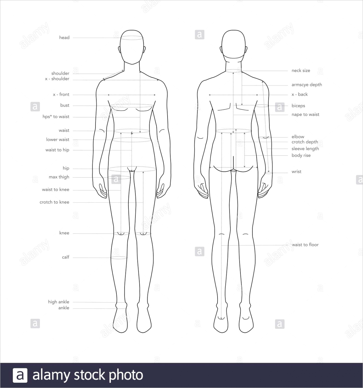 men body parts terminology measurements illustration for clothes and accessories production fashion male size chart 9 head boy for site and online shop human body infographic template image