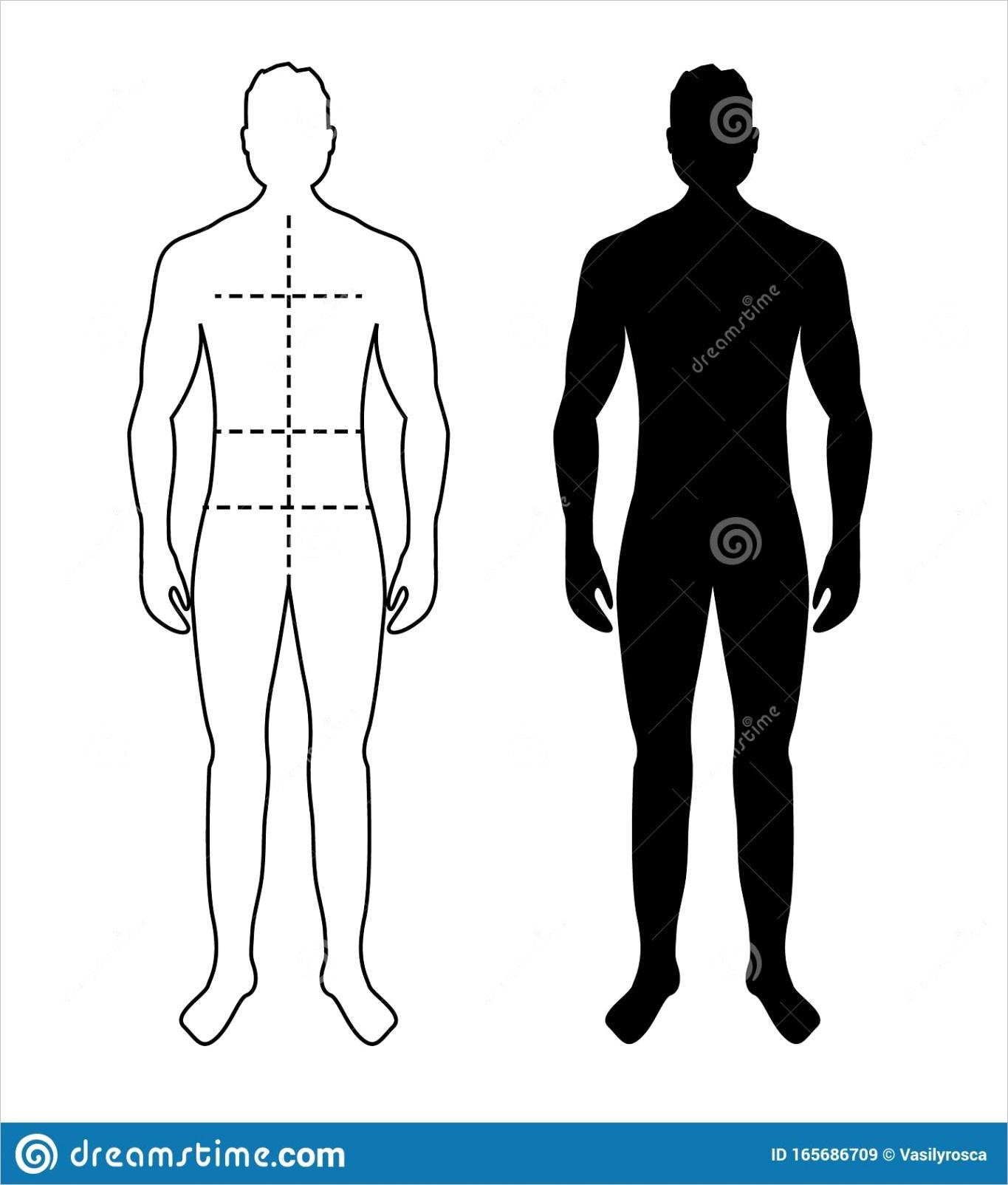 full male bodyml