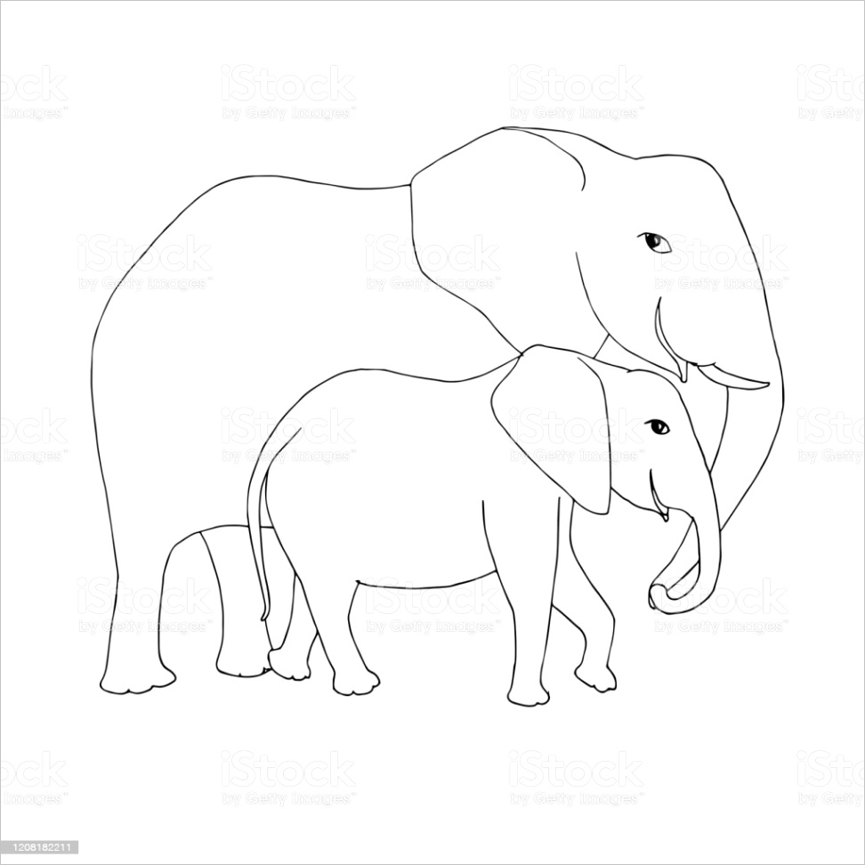 elephant family sketch animal outline hand drawn ink monochrome art design element gm
