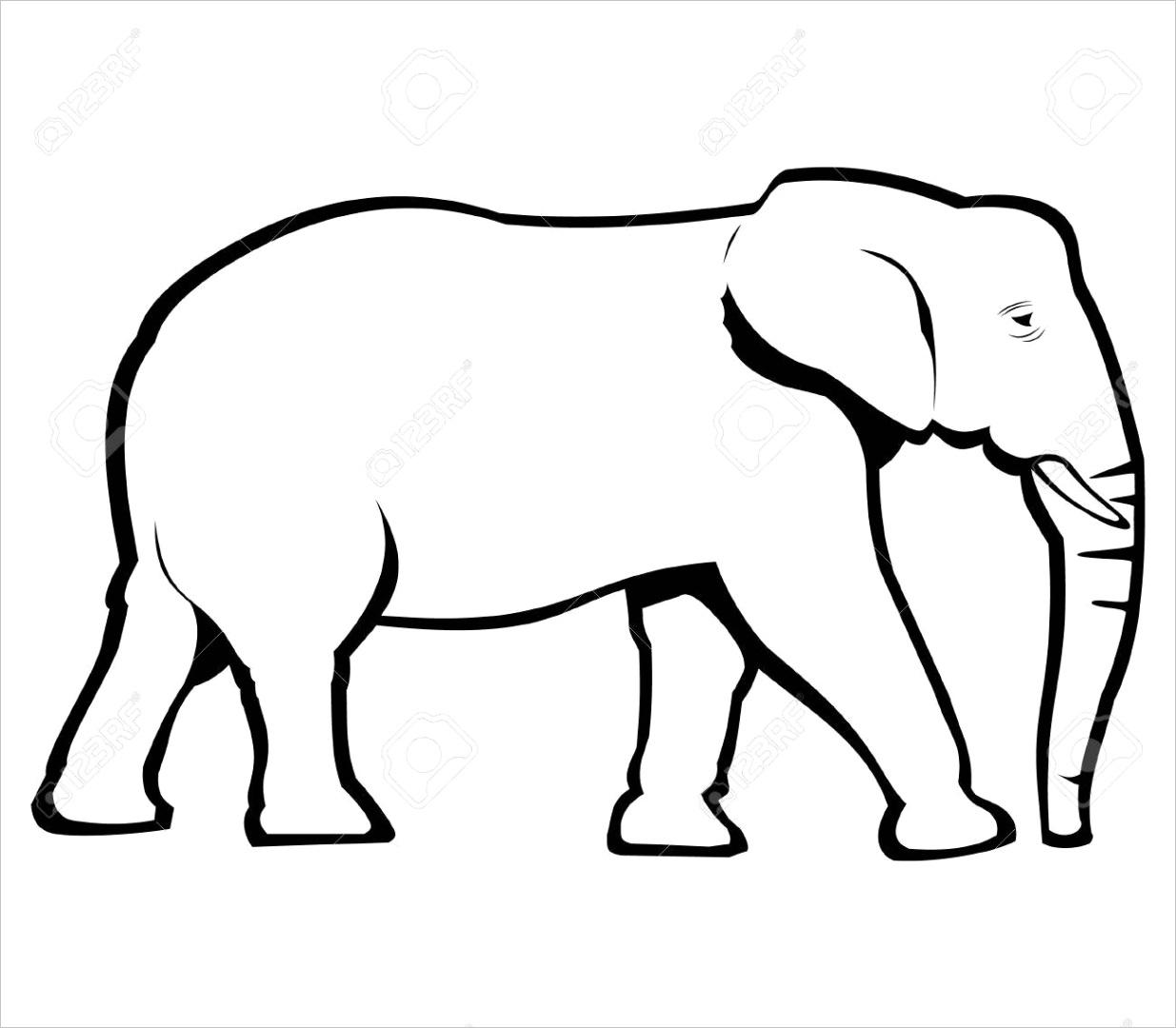 photo elephant outline