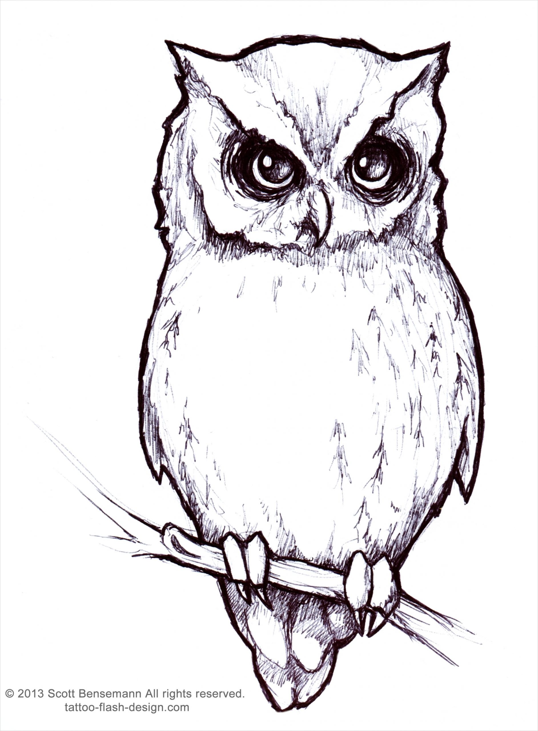 owl outlineml