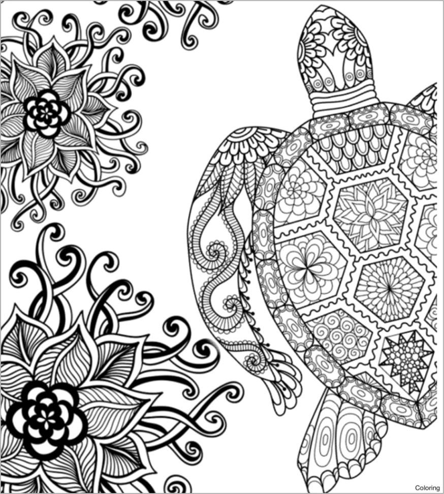 mandala sea turtle coloring pages