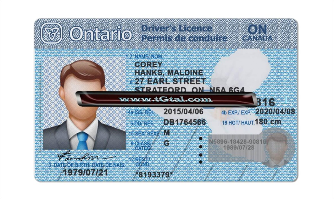 ontario drivers license template psd photoshop
