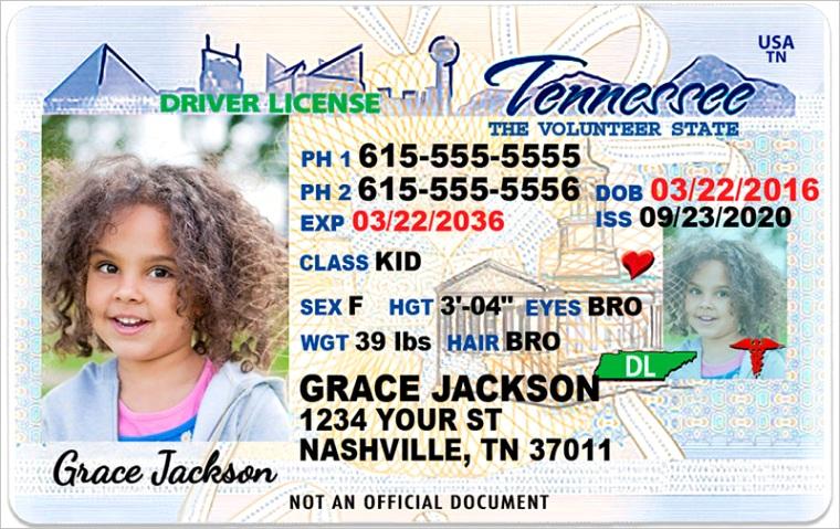 tennessee kid driver license for children under 12