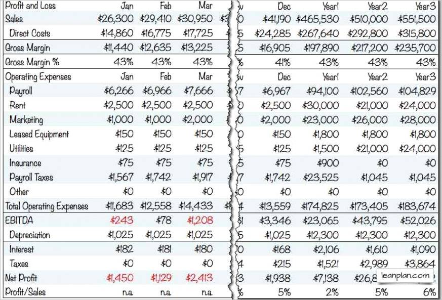 standard business plan financials projected profit and loss