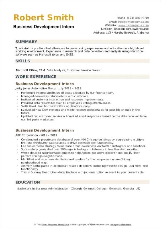 business development intern
