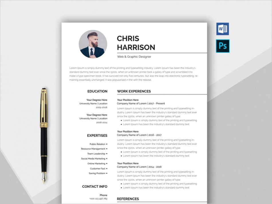 free professional resume template in word